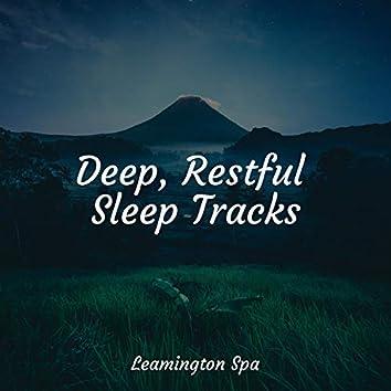 Deep, Restful Sleep Tracks