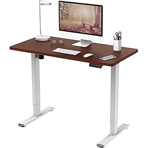 FLEXISPOT Mesa de pie ajustable de altura eléctrica para sentarse, escritorio, ajustable, con panel inteligente de memoria, serie EF1 (120 x 60 cm, marco blanco+escritorio caoba)