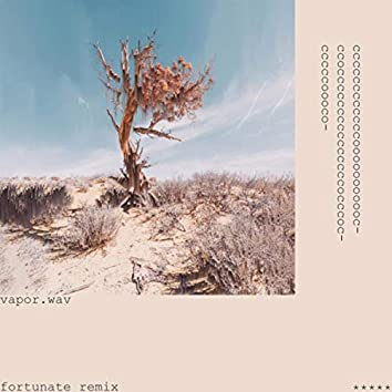 Vapor.wav (Remix)