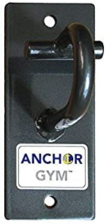 Anchor Gym H1 Workout Wall Mount Strap Anchor | Wall, Ceiling Mounted Hook Exercise Station for Suspension Straps, Resistance Bands, Strength Training, Yoga, Home Gym
