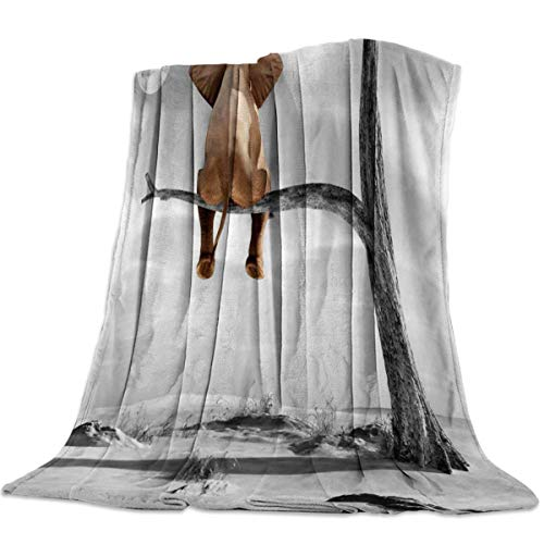 Manta Para Elefante Blanket 125 X 100CM