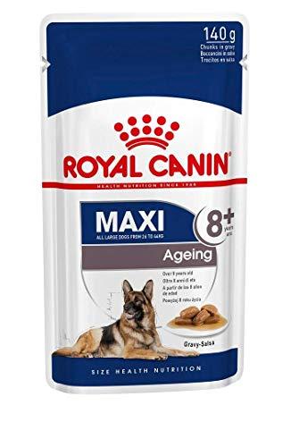 ROYAL CANIN Comida húmeda Maxi Ageing 8+ Trozos de Carne en Salsa para Perros Senior de Razas Grandes - Caja 10 x 140 gr (Bolsitas) ✅