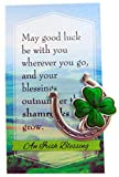 Irish Good Luck Charm Lucky Horseshoe Clover St Patricks Day Gift Set with Blessing Card