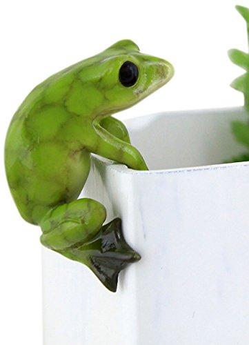 Top Collection Miniature Fairy Garden and Terrarium Frog Flower Pot and Vase Hugger, Mini