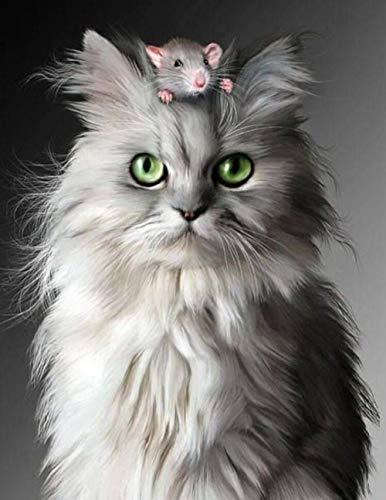 Leuke kat en muis 5D DIY diamant tekening omvatten volledige kit ronde boor volledige boor kantoor muur Decor verf door nummers plakken lijm schilderen 50cmx60cm 50cmx60cm