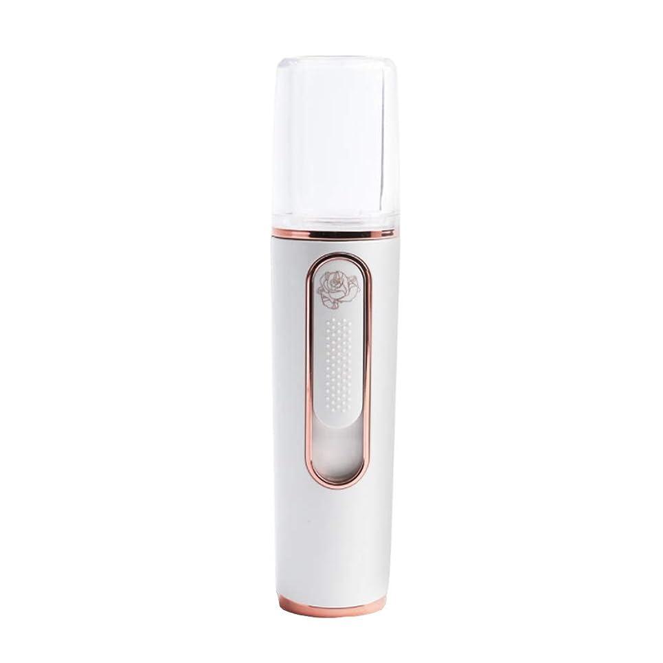葉巻挑発する推測噴霧器蒸し顔噴霧器コールドスプレーポータブルハンドヘルド美顔器USB充電スマートコンパクトタイミング