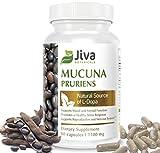 Mucuna Pruriens Capsules ( 1100 mg ) – L Dopa Mucuna Advanced Mucuna Pruriens Powder & Velvet Bean Extract Formula – by Jiva Botanicals (90 Capsules)