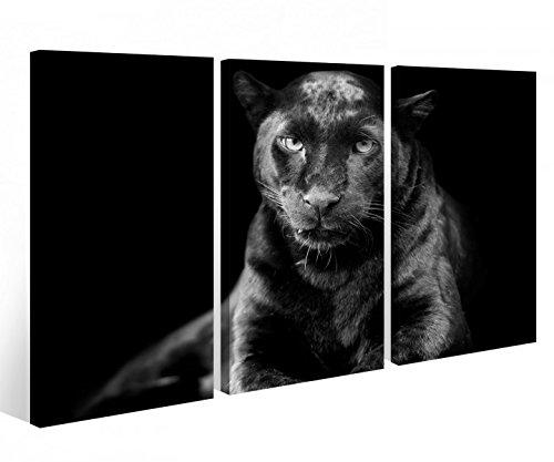 Leinwandbild 3 Tlg. Puma schwarz Panther Jaguar Tier Leinwand Bild Bilder auf Keilrahmen Holz - fertig gerahmt 9O933, 3 tlg BxH:120x80cm (3Stk 40x 80cm)