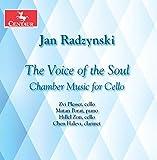 Voice of the Soul -  Zvi Plesser, Audio CD