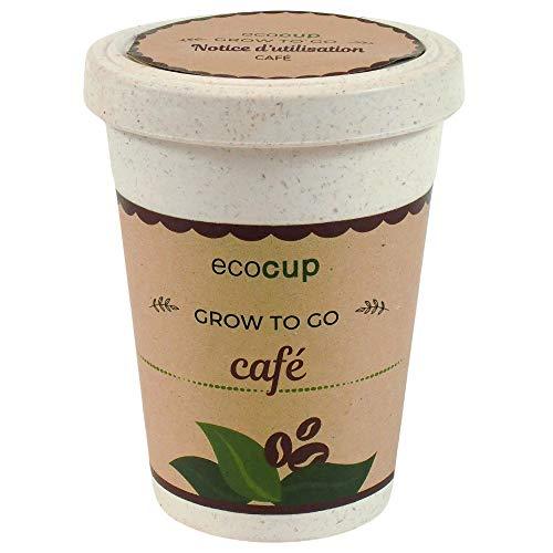 Feel Green Ecocup, Café Exotics, Idée Cadeau (100% Ecologique), Grow-Your-Own/Kit Prêt-à-Pousser, Plantes Dans Coffee Cup 10 x 8 cm, Produit En Autriche