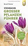 Steinbachs großer Pflanzenführer: Blumen, Sträucher, Bäume. 2270 farbige Abbildungen von Bruno P. Kremer