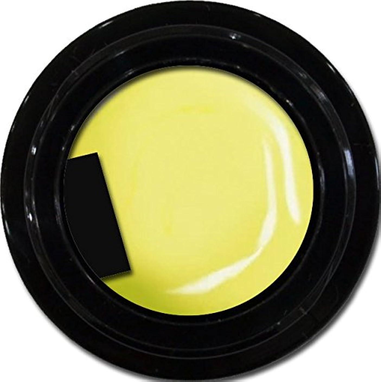 アデレード航空便むちゃくちゃカラージェル enchant color gel M601 Lemonade 3g/ マットカラージェル M601 レモネード 3グラム
