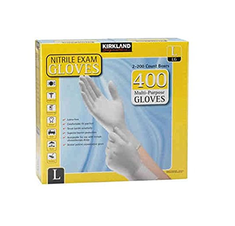 Kirkland Signature Nitrile Exam Multi-Purpose Large Gloves Latex-free 200-Count, 2-Pack (Total 400-Count Gloves)