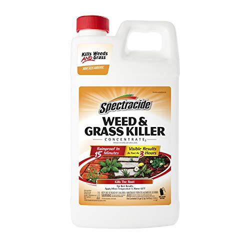 Spectracide Weed & Grass Killer Concentrate, 64 Fl...