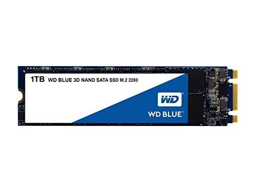 Western Digital WDS100T2B0B WD Blue 1TB ...