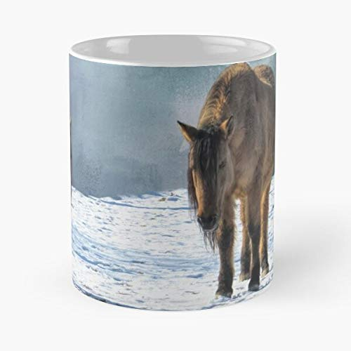 Mustang Steed Brumby Mare Palomino Mount Brumbies Mustangs Eat Food Bite John Best Taza de café de cerámica de 325 ml