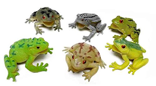 Quality Judaica Passover Frogs - Seder Toy Plagues, Large Size and Squeak, 6-Pack