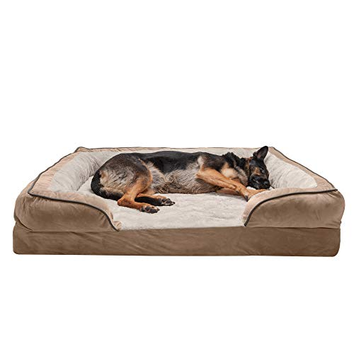 Dog Bed for Man's Best Friend