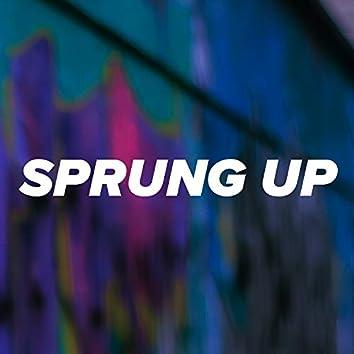 Sprung Up