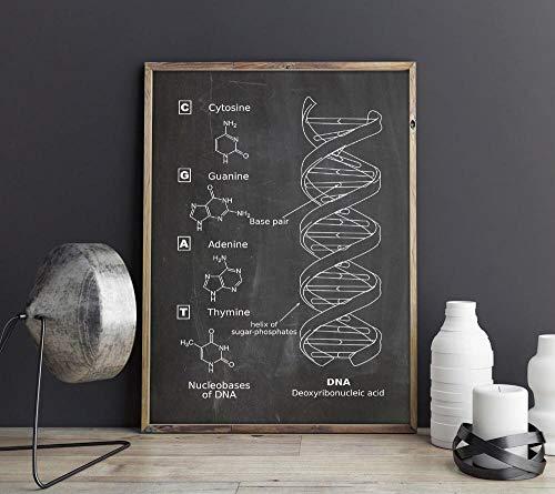 ADN, arte de la pared, genética, carteles, decoración de la pared de biología, impresión vintage, plano, idea de regalo para estudiantes de medicina, decoraciones de ciencias / 42x60 cm(sin marco)