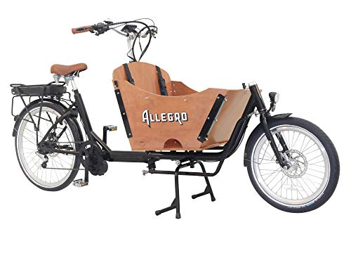 E-Bike Lastenfahrrad Allegro E-Cargo Transport Bild 5*