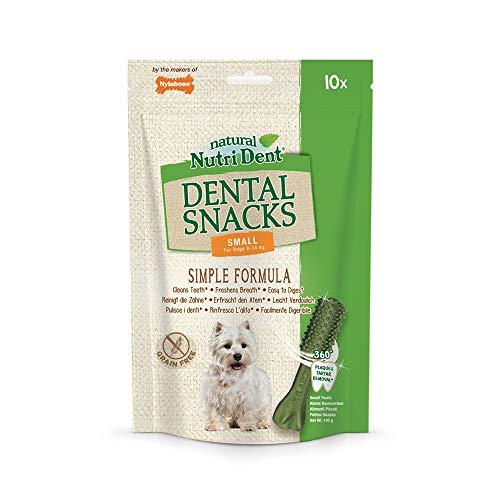 Nylabone Nutri Dent, natürliche für Hunde, reinigen die Zähne, erfrischen den Atem und sind leicht verdaulich, 10 leckere Zahnpflege-Snacks, 1er Pack (1 x 0.14 kg)