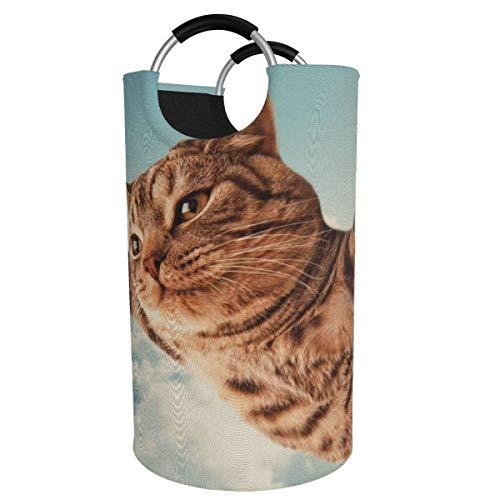 N\A Cesto de lavandería Grande de 82 l, I Believe I Can Fly Cat Cesto de Ropa Plegable de Tela, Bolsa de Ropa Plegable, cesto de Almacenamiento Plegable para lavadero