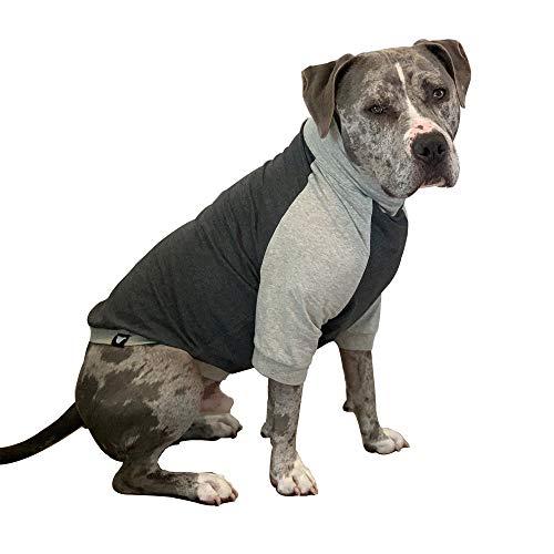 Tooth & Honey Big Dog/Pullover/Large Dog Shirt/Light Weight Shirt/Color Block Shirt/Summer Shirt (Large)