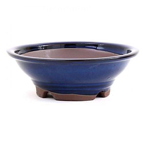 Bonsai – Coque Ø 22 x 7,5 cm, bleu 22027