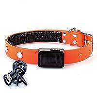 DUSHUDIAN ペットの首輪犬の首輪TPUソーラー充電、ツェッペリンルミナス、充電用USBフラッシュライトアップカラー (Color : Orange, Size : Charging (L))
