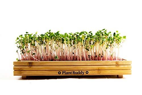 Indoor and Outdoor Microgreens Growing Kit – Bamboo Sprouting Seed Tray with Coco Coir, Spray...