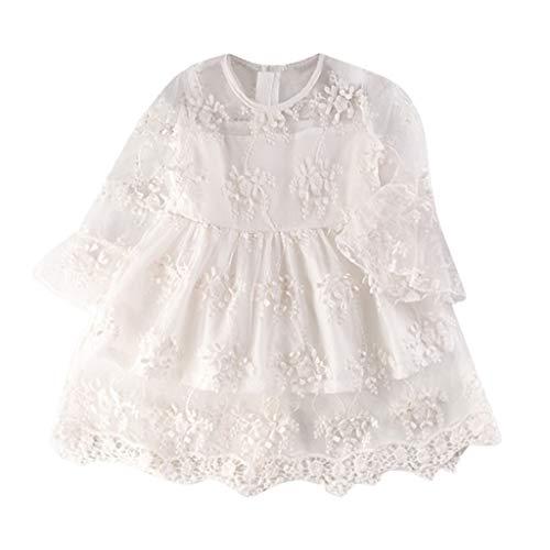 MEIbax Mädchen Stickerei Tüll Party Hochzeit Spitzenkleid Kinder Baby Pageant Prinzessin Kleider Kleinkind Blumenmädchenkleid Sommerkleid