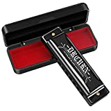 Best Harmonicas - Drcurn Blues Harmonica 10 Holes 20 Tunes Mouth Review