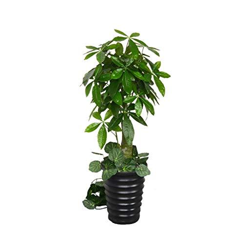 Kunstmatige Simulatie Pachira Macrocarpa Indoor Decoratie Plastic Groene Plant Grote Bonsai 718