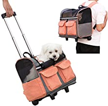 Asvert Portable Cat Carrier Backpack with Wheel Breathable Airline Approved Pet Travel Rolling Trolley Backpack for Small Dogs Cats Rabbit,Blue (Orange)