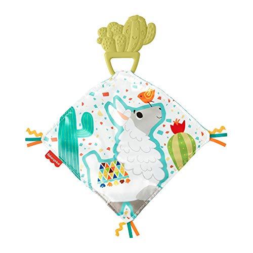 Fisher-Price GJD38 - Beiß- und Kuschelkaktus, Beißhilfe aus Naturkautschuk, Baby Spielzeug ab 3 Monaten