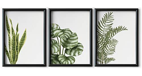 Set de 3 Láminas Decorativas de 30 x 42 cm (A3) para...