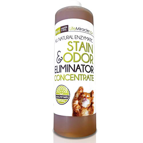 Life Miracle Enzyme Cleaner & Pet Odor Eliminator Concentrate   Deep Cleaning Enzymatic Spot Remover for Dog Cat Urine, Rug, Carpet, Upholstery, Couch & Car Stains & Smells   Makes 2 GALLONS