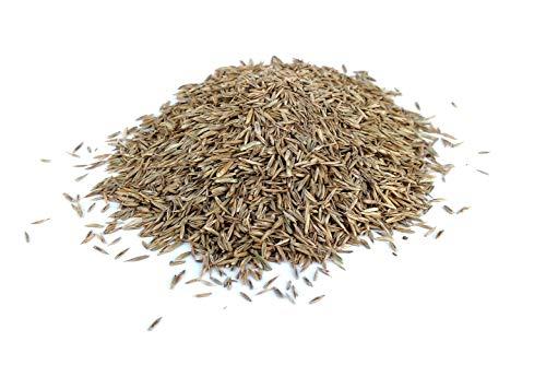 Chrestensen Landschaftsrasen für Kleintierhalter 10 kg Rasen Samen