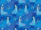 Jersey-Stoff - Die Eiskönigin - von 0,5 Metern 50 cm x 150