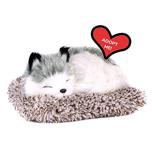 Mini Alaskan Husky, Realistic, Lifelike Stuffed Interactive Plush Toy, Electronic Pets, Companion Pet Puppy with 100% Synthetic Fur – Perfect Petzzz