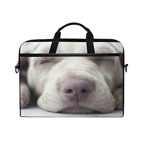 Borsa per laptop Little Weimar Puppy Dog Sleep Front 15-15.4 pollici Custodia per laptop, Borsa a tracolla Messenger per uomo Donna, Studenti universitari Uomini d'affari Impiegati