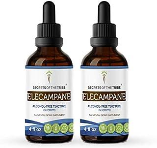 Elecampane Tincture Alcohol-Free Liquid Extract, Organic Elecampane (Inula Helenium) Dried Root (2x4 FL OZ)