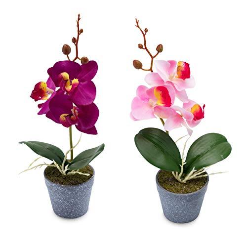 Wella Flora Orquídeas artificiales [juego de 2] – Orquídea decorativa en maceta – Bonitas flores artificiales como reales – Flores artificiales – Orquídea artificial duradera (violeta/rosa)
