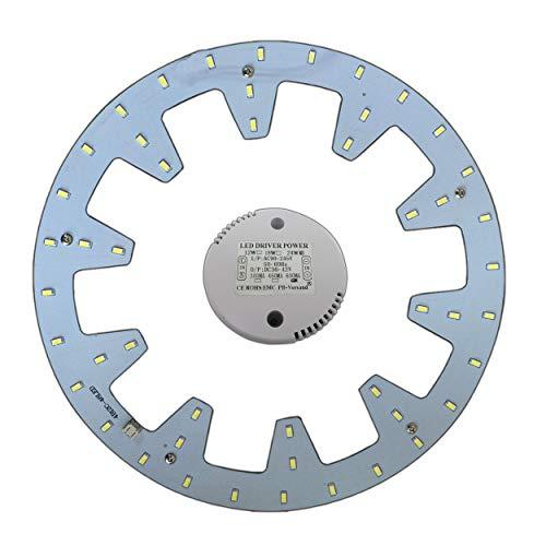 Module LED – Kit de transformation (intensité variable/non variable) pour plafonnier - Anneau lumineux - Plafonnier rond - Lampe tube (blanc chaud/lumière du jour) 24 W, blanc lumière du jour.