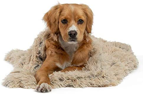Best Friends by Sheri Luxury Shag Dog Cat Throw Blanket 30x40 Taupe Matching Donut Shag Cuddler product image