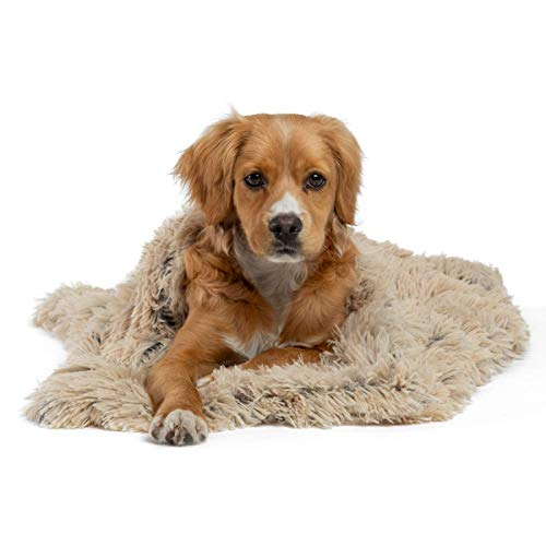 Best Friends by Sheri Luxury Shag Dog & Cat Throw Blanket 30x40, Taupe, Matching Donut Shag Cuddler Bed, Multi-Use, Mat, Sofa Cover, Warming, PTB-SHG-TAU-3040
