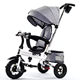 MAMINGBO Triciclo del bebé plegable portátil Pedal Trike bicicletas, for los muchachos del niño/niñas, de 7 meses - 6 años (Color : Gris)
