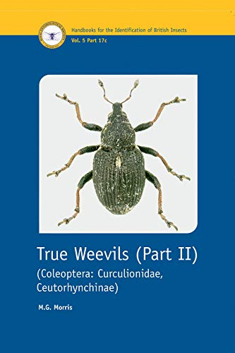 Coleoptera, Curculionidae, Ceutorhynchinae (Pt. 2) (Handbooks for the Identification of British Insects)