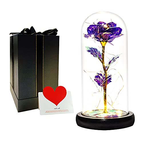 DUOSME Purple Galaxy Rose with LED Lights in Glass Dome,Birthday Gifts...